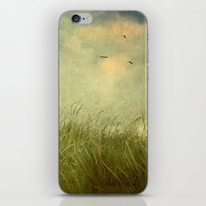 Taken by the Wind iPhone & iPod Skin