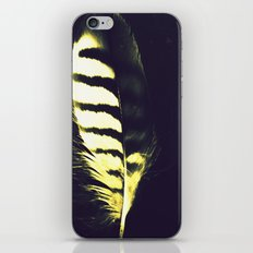 Shake Your Tail Feather iPhone & iPod Skin