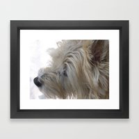 Cute Dog with snow on his snout Framed Art Print
