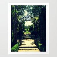 Filoli Path 1 Art Print