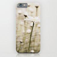 Daisy Fields 4eva iPhone 6 Slim Case