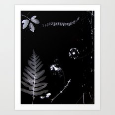 natural elements Art Print