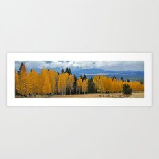 Arizona Autumn at Lockett Meadow Art Print