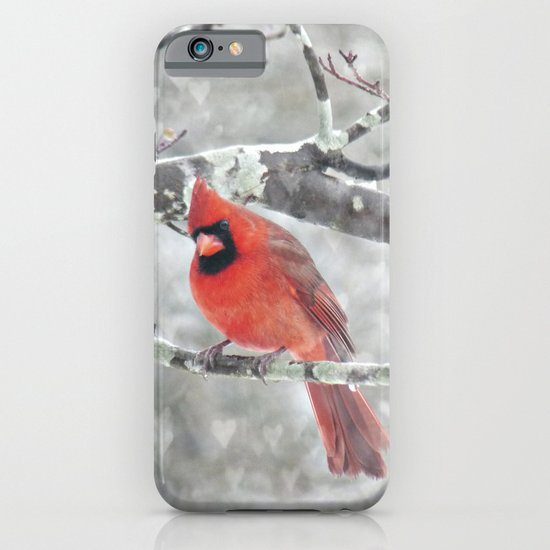 Color My Winter iPhone & iPod Case