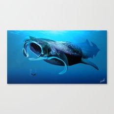 Manta Whale Canvas Print