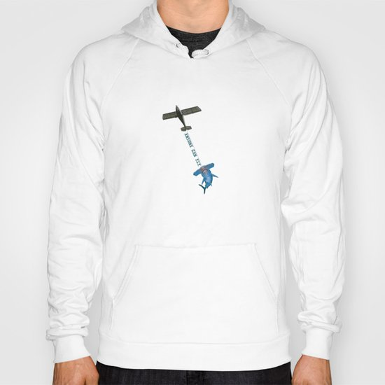 Flying Lessons Hoody