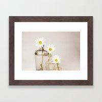 Vintage Daisies - White Framed Art Print