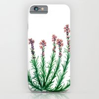 iPhone & iPod Case featuring Heller's Blazing Star by Katy Betz
