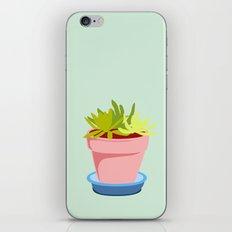 Succulent #2 iPhone & iPod Skin