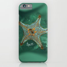 Starfish on Teal. iPhone 6s Slim Case