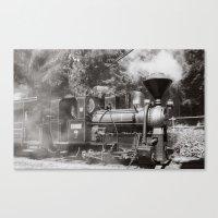 Train and steam Canvas Print