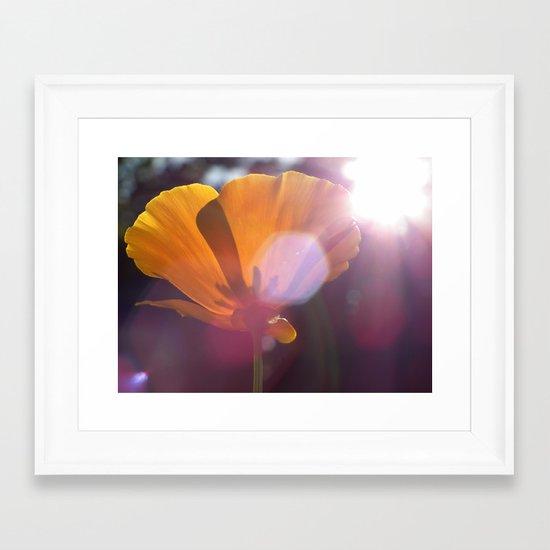 Sunlit Flower Framed Art Print