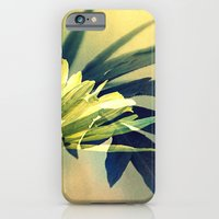 Touch me see me iPhone 6 Slim Case