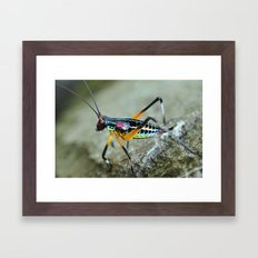rainbow bug Framed Art Print