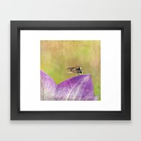 Dance Of The Hoverfly Framed Art Print