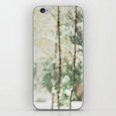 Falling Snow iPhone & iPod Skin