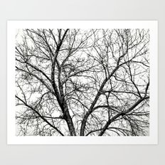 THE COLOR OF WINTER Art Print