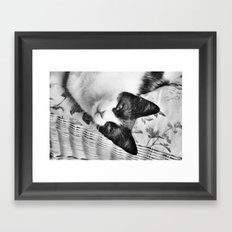 I Was Napping Framed Art Print