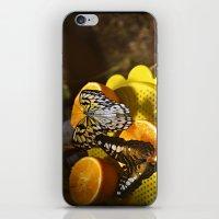 Taste Of Citrus iPhone & iPod Skin