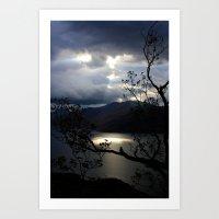 Nature's Spotlight Art Print