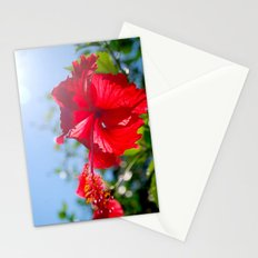 hibiscus in Thailand Stationery Cards