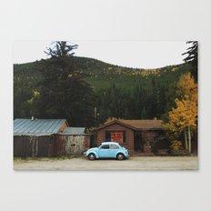 Bailey Bug Canvas Print