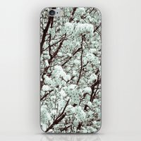 Winter Petals iPhone & iPod Skin