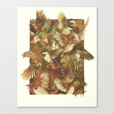 Red-Throated, Black-capp… Canvas Print