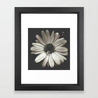 elegant flower  Framed Art Print