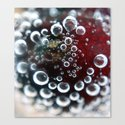 Cherry Fizzzzzzzzz Canvas Print