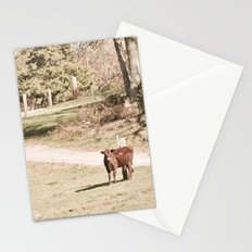 How Now! Stationery Cards