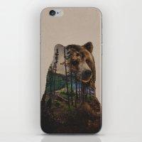 Bear Lake iPhone & iPod Skin