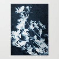 Botanical Series I Canvas Print
