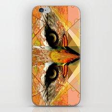 Eagle Eyes iPhone & iPod Skin