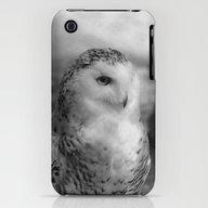 Snowy Owl - B & W iPhone (3g, 3gs) Slim Case