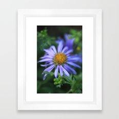 Blossom 2 Framed Art Print