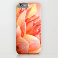 Dahlia Glow Macro iPhone 6 Slim Case