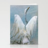 Egret Preparing to Launch Stationery Cards