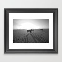 Dogs On The Beach Framed Art Print