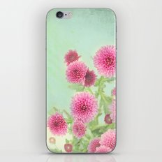 colorful spring iPhone & iPod Skin