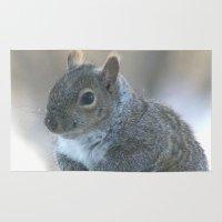 Grey Squirrel Rug