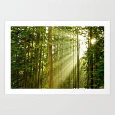 A Light Peeks Through Art Print