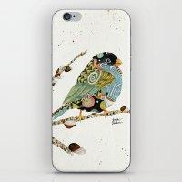 Cafe Swirly Bird 4 iPhone & iPod Skin