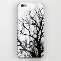 Tree Silhouette on Wood iPhone & iPod Skin