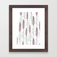 Flowery Pods Framed Art Print