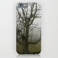 Tree with Fog iPhone 6 Slim Case