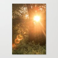 Summer's Coming Canvas Print