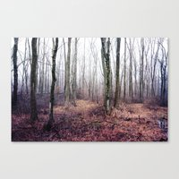 find your way Canvas Print