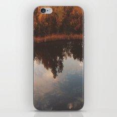 truce iPhone & iPod Skin
