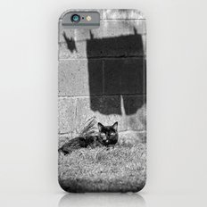 The cat and the pants iPhone 6s Slim Case